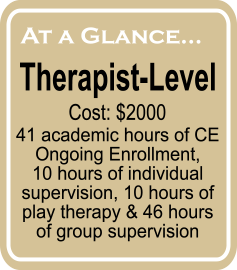 therapist overview